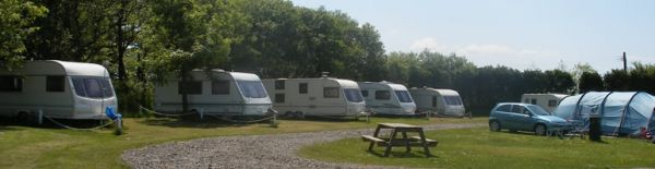 Brynawelon Caravan & Camping Site